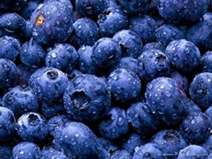 Blueberries food brain